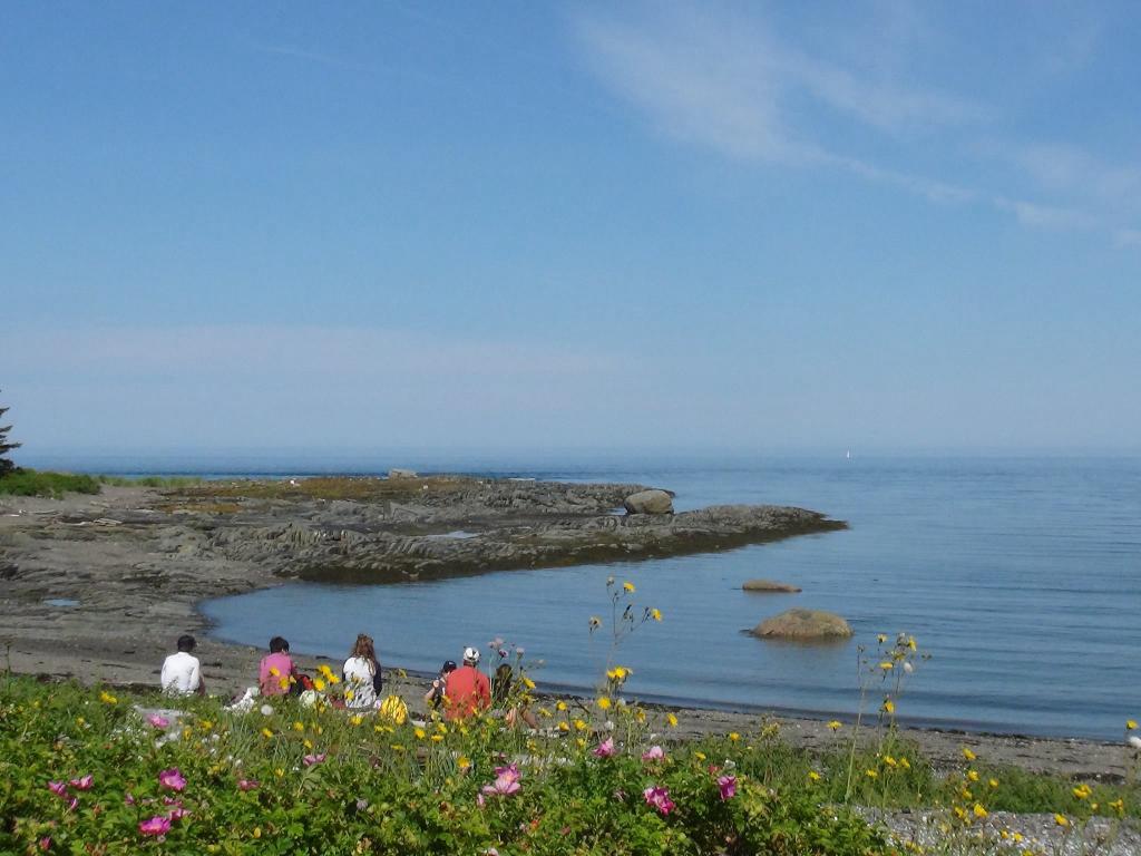 Premier embarquement vers l'île Saint-Barnabé vendredi