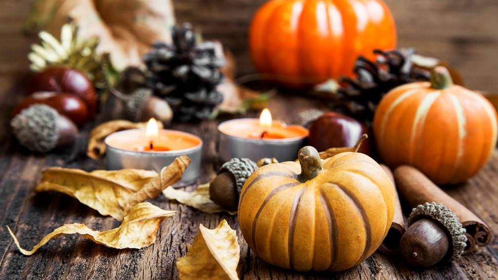 Égayons l'automne
