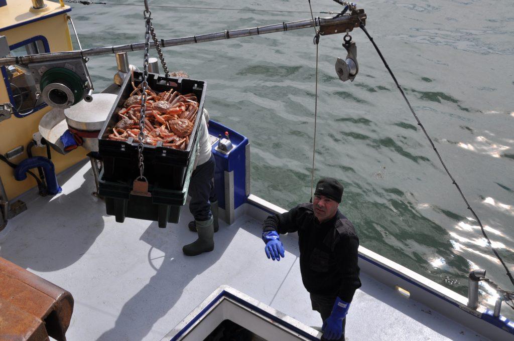 Autre mauvaise nouvelle pour les pêcheurs de crabes de la zone 17