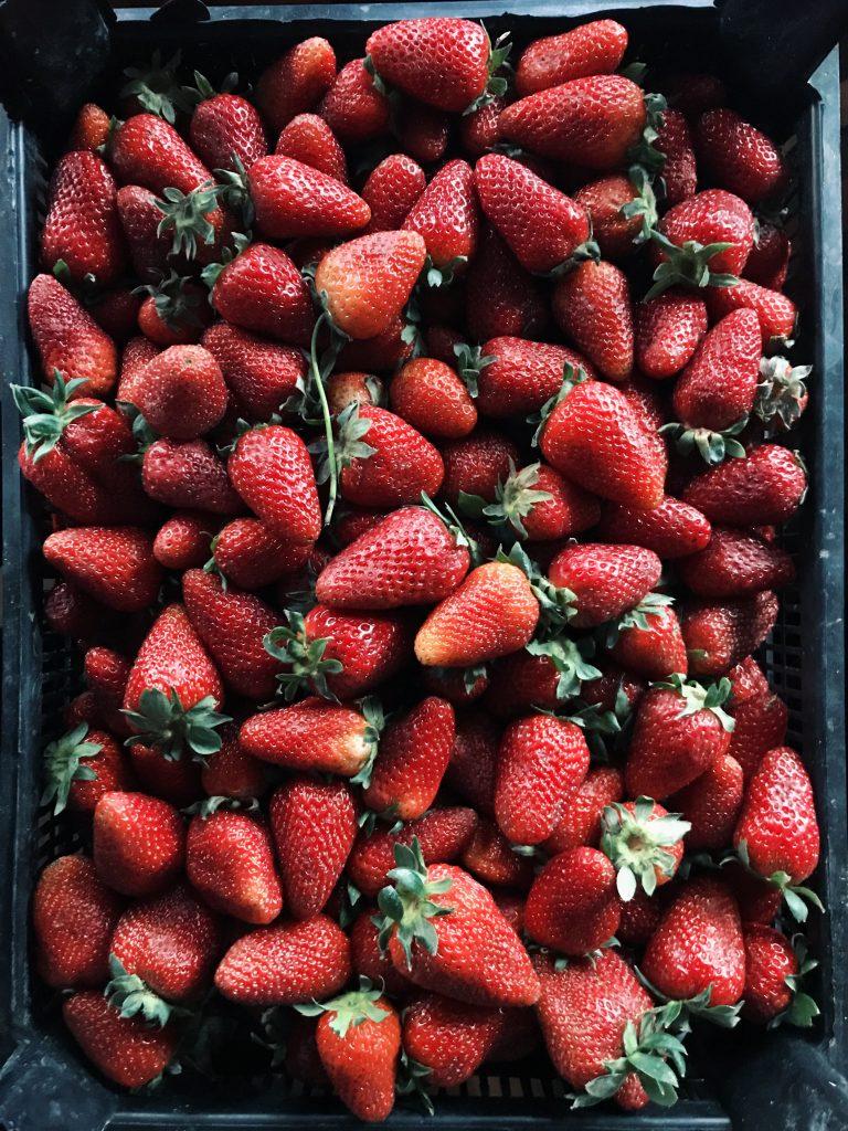 L'autocueillette de fruits et de légumes sera autorisée