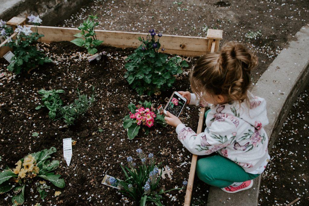 Jardins libres : grande déception au Bic