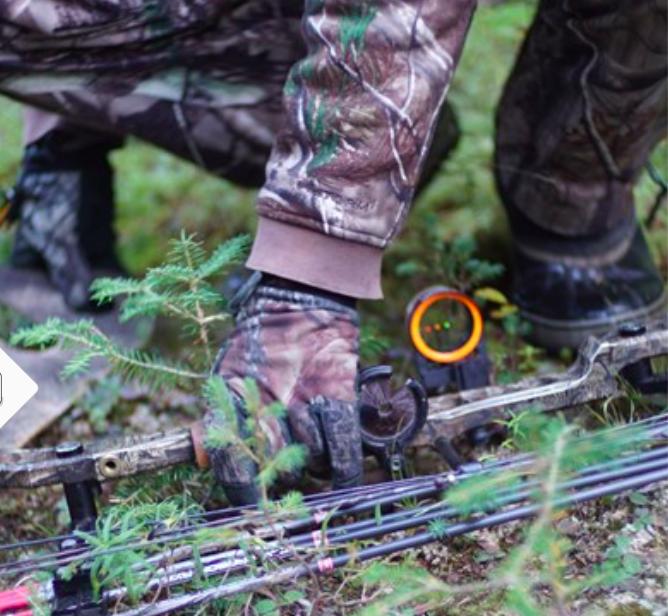 Les cours en ligne favoriseraient l'accès et la relève à la chasse…!