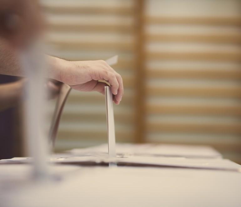La visioconférence de consultation sur les districts électoraux diffusée en direct