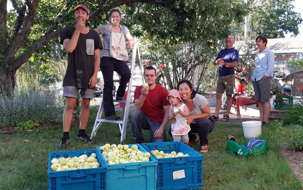 Les Fruits Partagés de Moisson R-N, une saison réussie