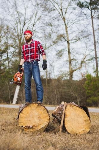 La réforme du régime forestier ne fait pas l'unanimité
