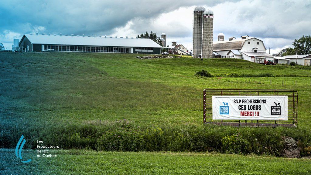 Malgré une hausse des ventes au détail, la croissance de la production laitière a été plus faible