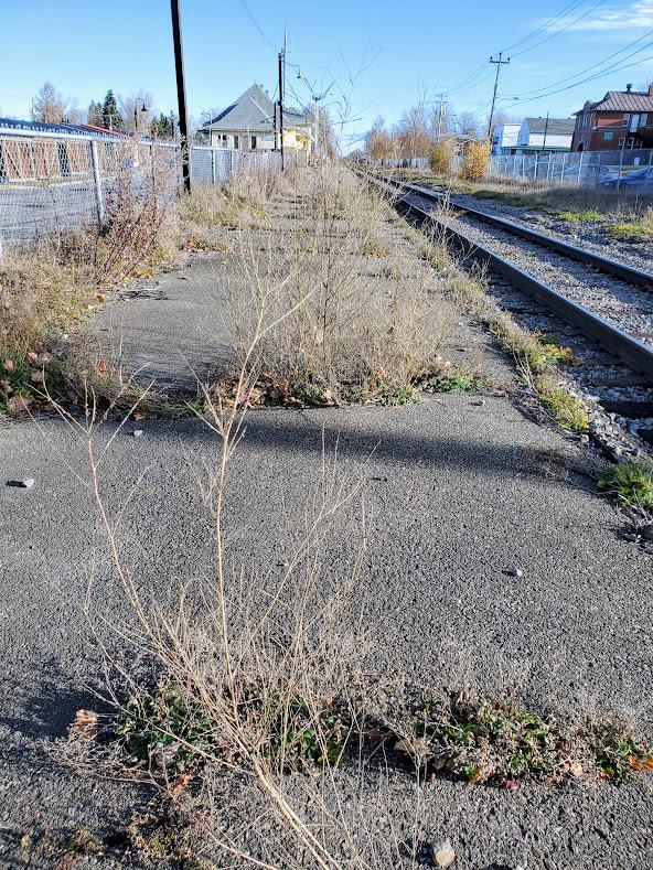 La gare et son environnement : un autre site patrimonial qui manque d'amour!