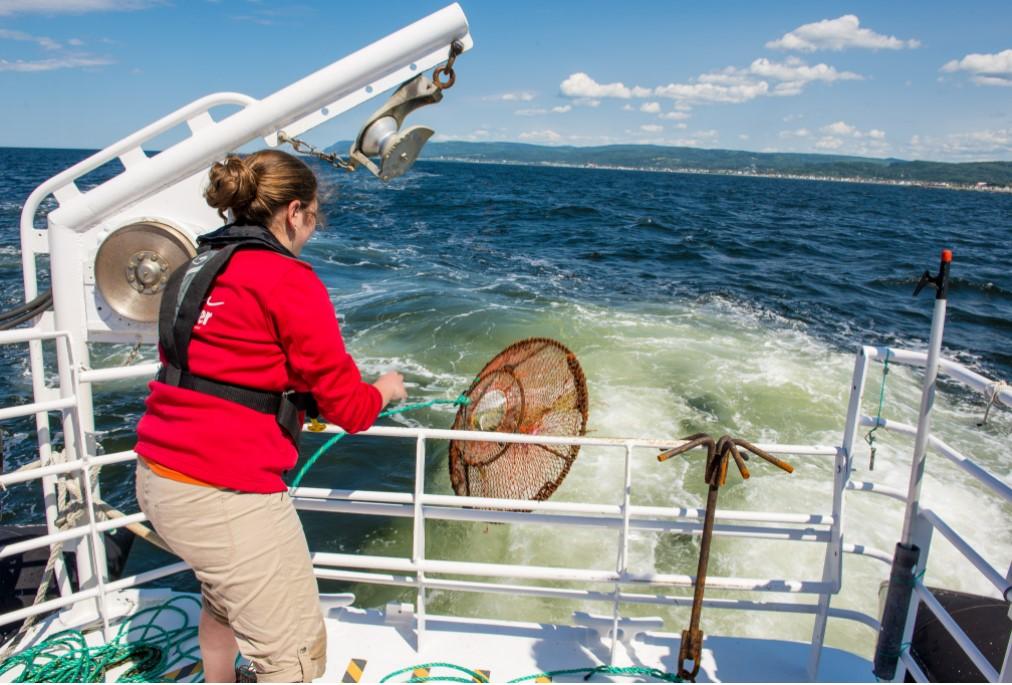Exploramer réserve de grandes surprises aux amoureux de la mer