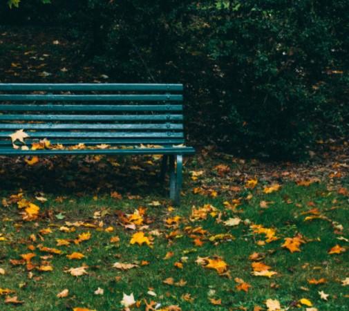 Des noms sont adoptés pour trois parcs de Rimouski