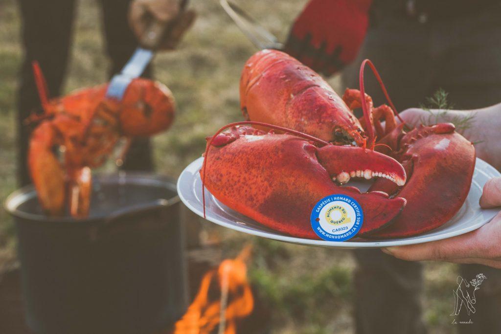La récolte de homard promet d'être généreuse en Gaspésie
