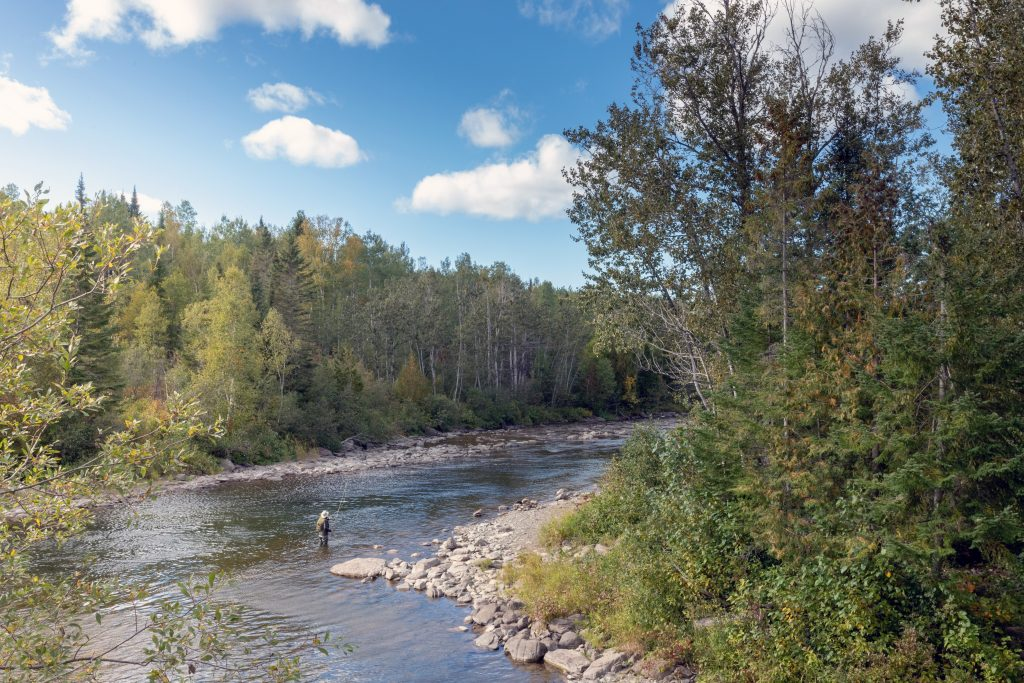 L'embouchure devient le pôle d'accueil du Parc régional de la rivière Mitis